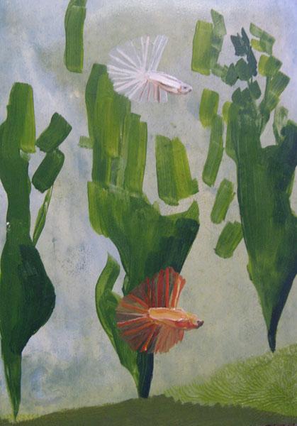 Fighting Fish and Seaweed