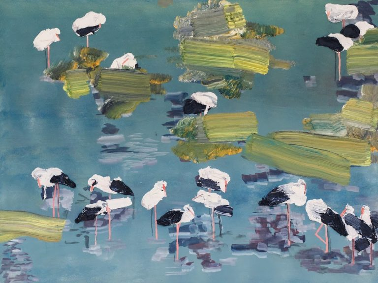 Storks on the Lake in Poland