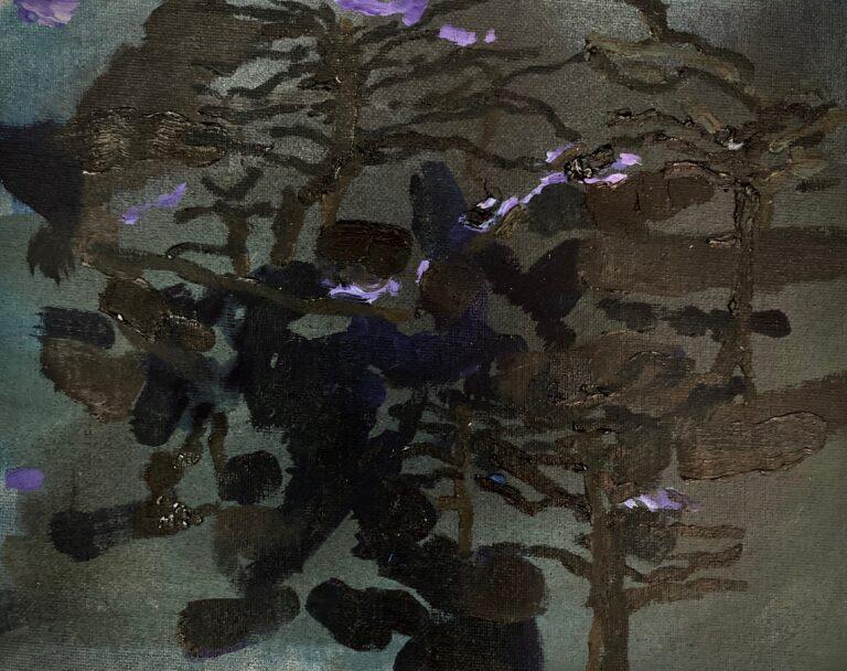 Reflections of Tress at Night 1